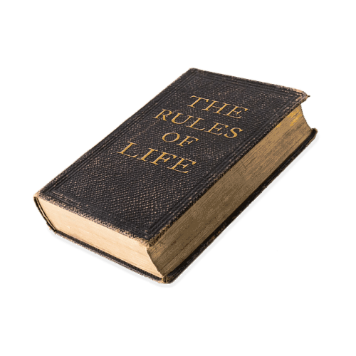 The Rules of Life, title of a fat book