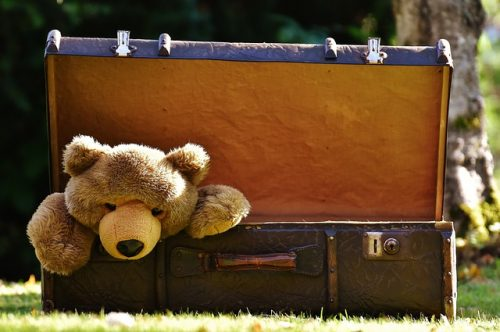 Teddy bear in luggage