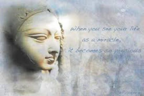 Buddha, when you see life as a miracle, it becomes precious