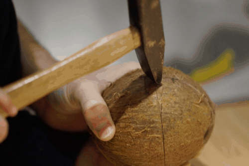 coconut shell being hammered